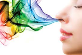 marketing-sensorial-olfato